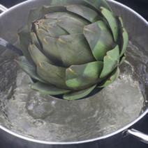 Küchengrundlagen – Mit Wasser kochen